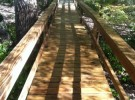 clean pressure washed wood walkway