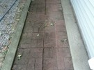 dirty paver walkway