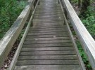 dirty wooden walkway